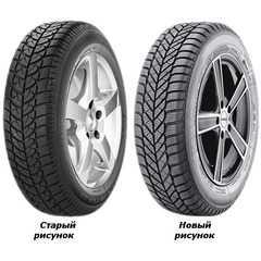 Купить Зимняя шина DIPLOMAT WINTER ST 165/70R13 79T