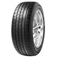Зимняя шина MINERVA S210 -