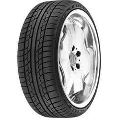 Зимняя шина ACHILLES W101X -