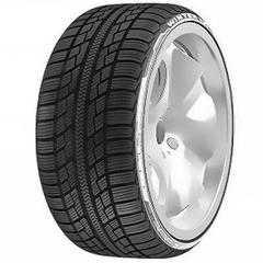 Купить Зимняя шина ACHILLES Winter 101X 195/65R15 91T
