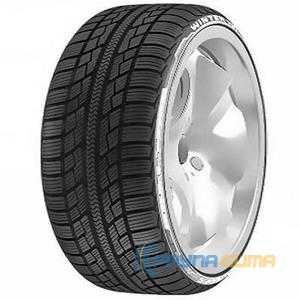 Купить Зимняя шина ACHILLES Winter 101X 215/60R17 96H